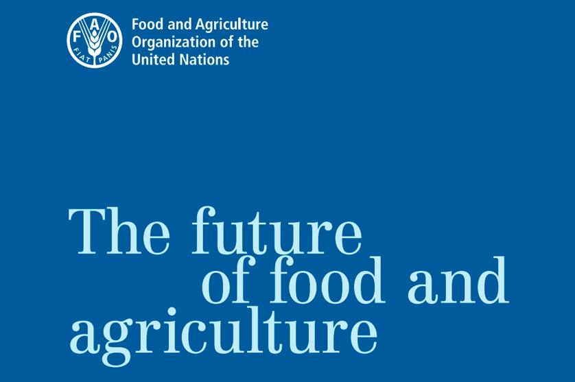 FAO apela a maior e melhor produção, mas medidas europeias previstas apontam em sentido contrário.