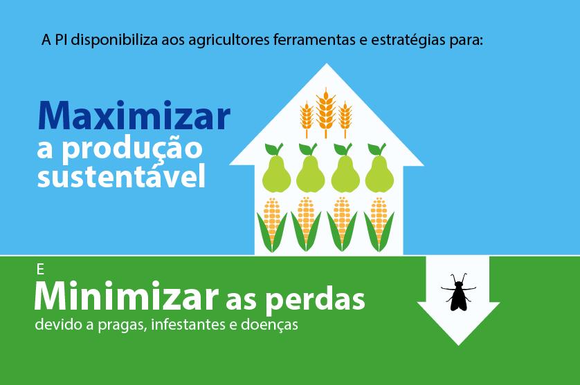 Produção integrada na agricultura preserva recursos e evita excedentes