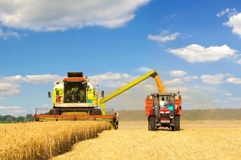 Não renovar licença para glifosato põe em risco produção alimentar