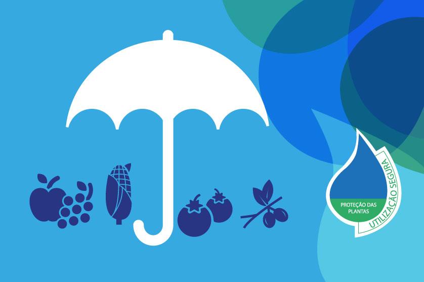 Indústria promove uso seguro e sustentável de produtos fitofarmacêuticos