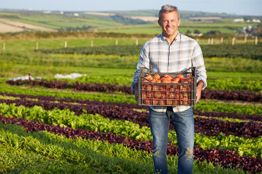 Agricultores na UE: o perfil de quem nos põe a comida no prato