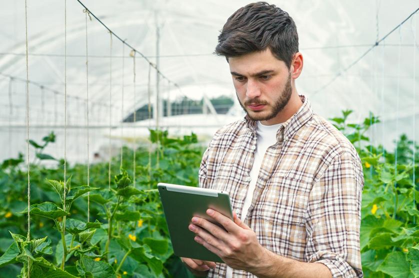 Quase 20% dos jovens agricultores tiveram formação específica