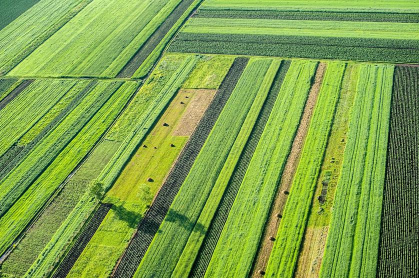 Agricultores e consumidores: Uma dupla inseparável