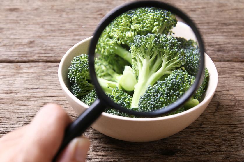 Bruxelas incentiva partilha de dados sobre fraude alimentar