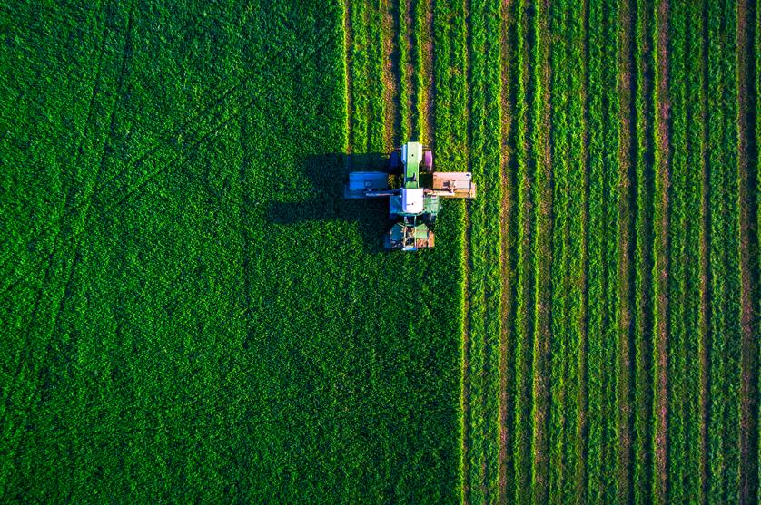 População portuguesa vê nos produtos fitofarmacêuticos um aliado da produção agrícola