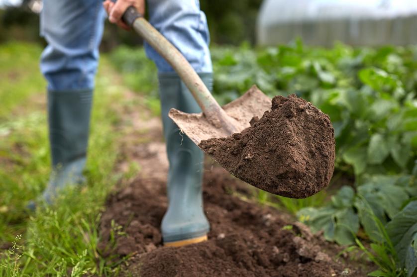 A agricultura familiar e a proteção da biodiversidade