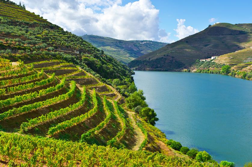 O Vinho do Porto está bem e recomenda-se