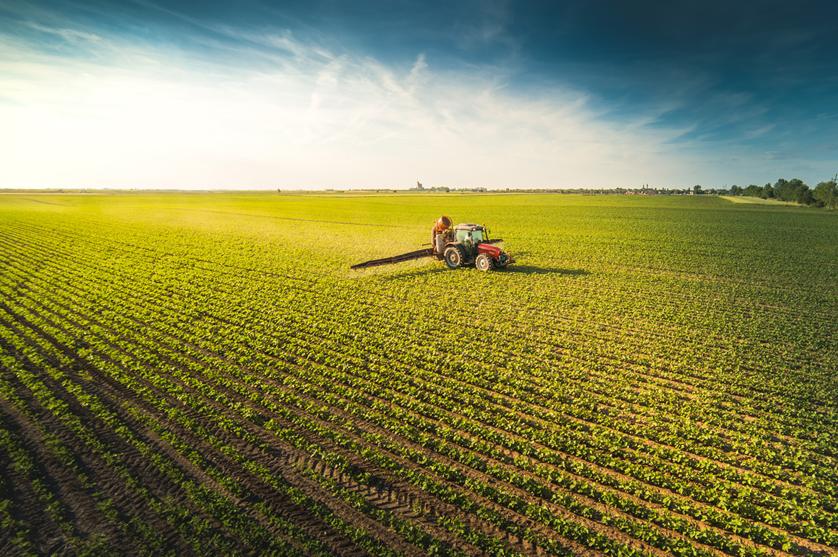 EUA lideram fornecimento de soja da UE com quota de 52%