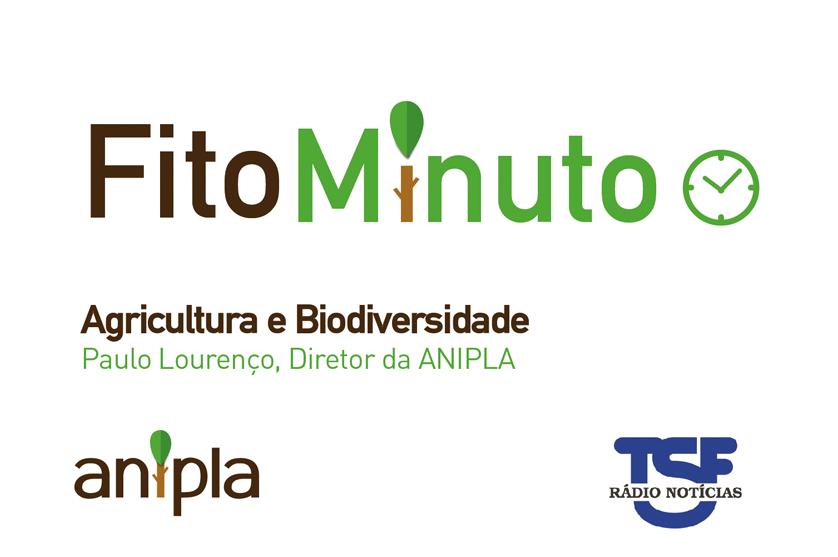 Fito-minuto sobre Ambiente – Entrevista a Paulo Lourenço