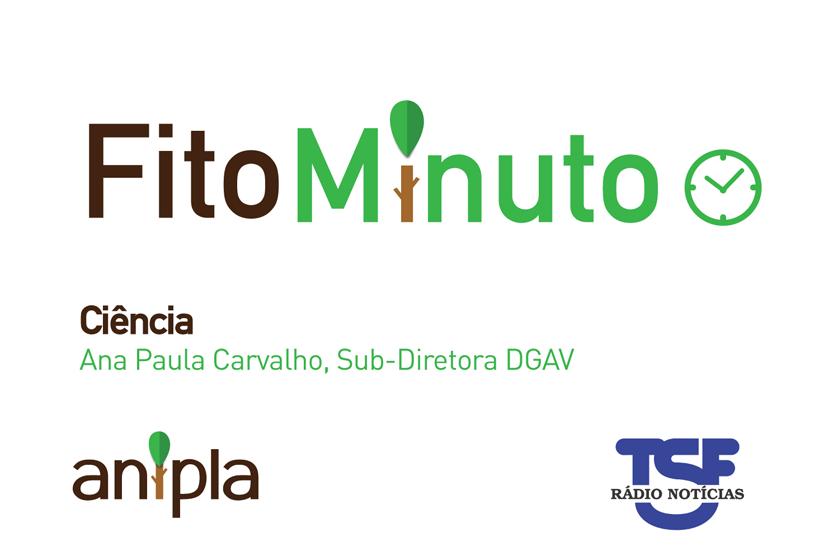 Fito-minuto sobre Ciência – Entrevista a Ana Paula Carvalho