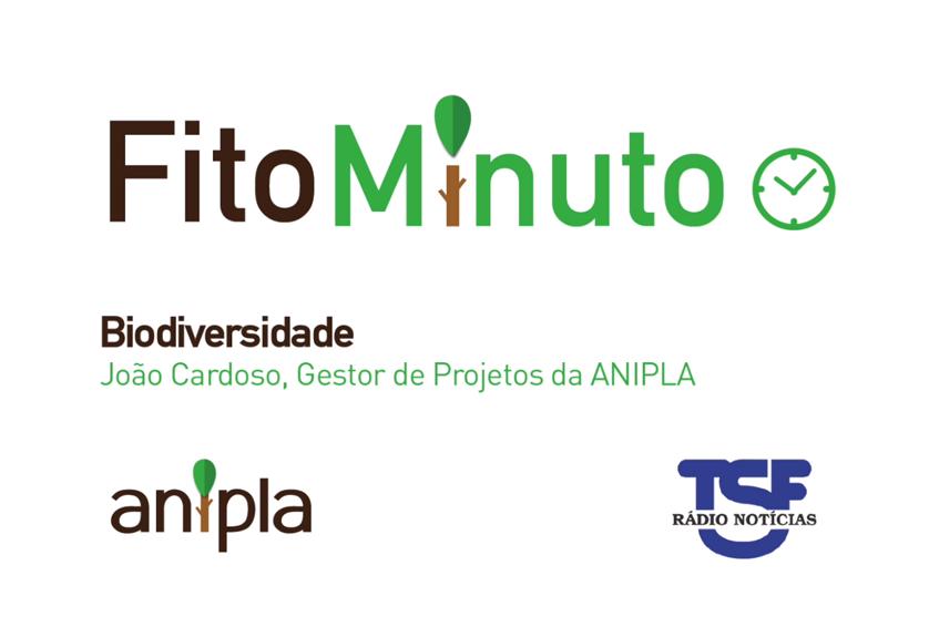 Fito-minuto sobre Biodiversidade – Entrevista a João Cardoso