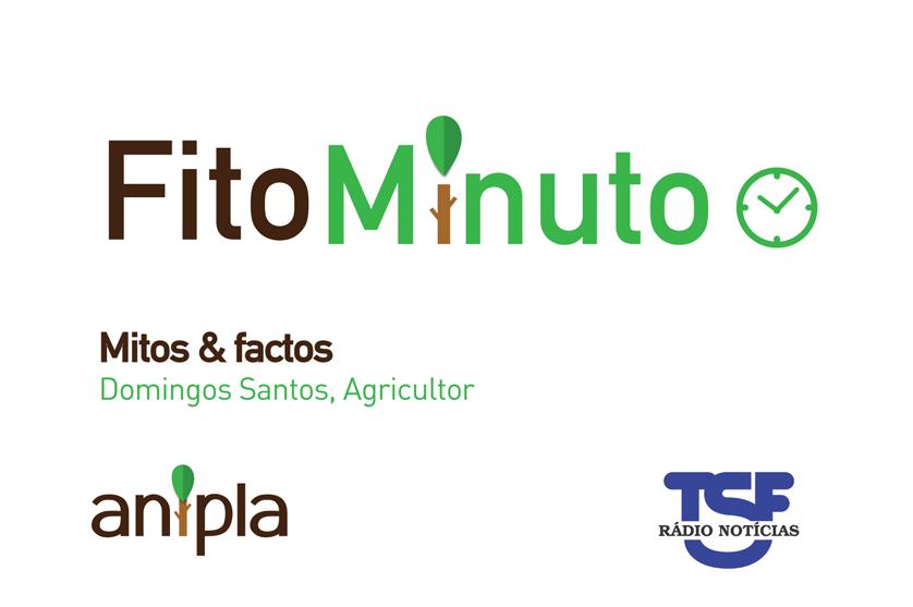 Fito-minuto sobre Mitos & Factos na Alimentação – Entrevista a Domingos Santos