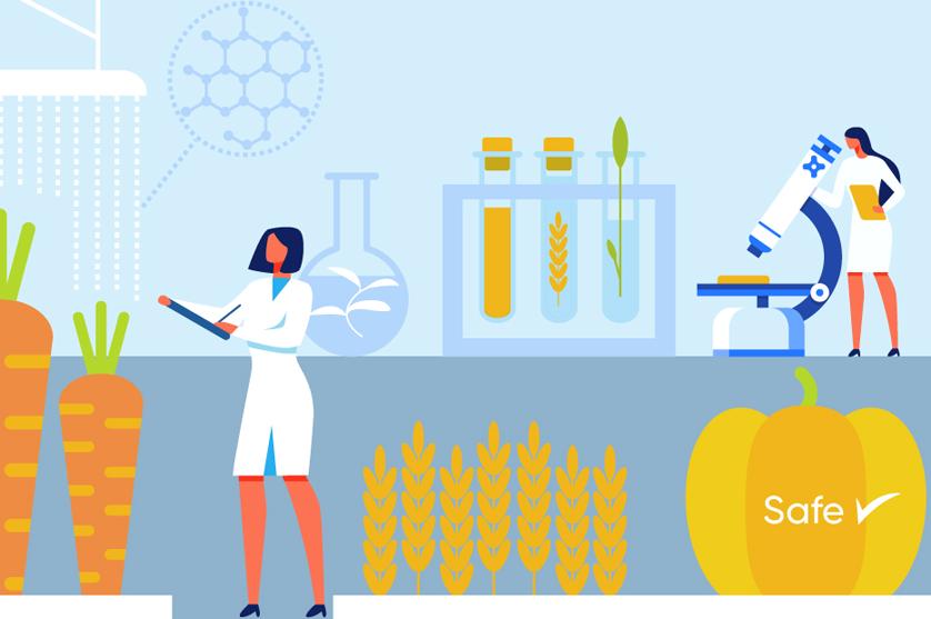 Como podem os alimentos geneticamente modificados ser a solução?